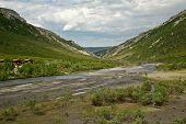 image of denali national park  - Savage River in Alaska - JPG