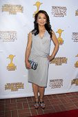 LOS ANGELES - JUN 26:  Ming Na arrives at the 39th Annual Saturn Awards at the Castaways on June 26,