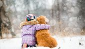 picture of christmas dog  - little girl hugging dog and looks forward - JPG
