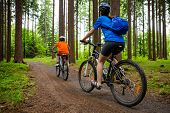 picture of country girl  - Girl and boy biking on forest trails  - JPG