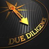 picture of diligent  - Due Diligence  - JPG