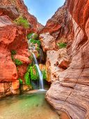 foto of grand canyon  - Elves Chasm is a side canyon in in Grand Canyon - JPG