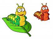 image of caterpillar cartoon  - Cartoon cute caterpillar character isolated on white - JPG