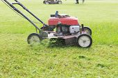 foto of movers  - working of lawn mover cutting grass leaves on garden field - JPG