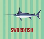 stock photo of swordfish  - Vector resizable drawing of a swordfish - JPG
