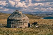 image of yurt  - Traditional yurt of nomadic tribe on green grasslands in Kyrgyzstan - JPG