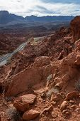 stock photo of valley fire  - red rock landscape in the Valley of Fire state park in Southern Nevada