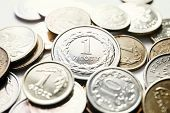 pic of lien  - close up of Polish zloty coins - JPG