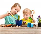 stock photo of little sister  - Two little sisters are engaged in gardening - JPG