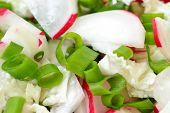 image of radish  - Salad with radish onion and cabbage on the table - JPG