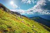 foto of mountain-range  - Chorna hora mountain range - JPG