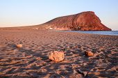 foto of canary  - Sunset on the Atlantic Ocean with a Mountain in Background El Medano Tenerife Canary Islands Spain - JPG