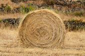 stock photo of hay bale  - Hay Bale In The Foreground Of Rural Field - JPG