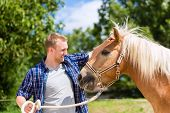 picture of pony  - Man petting horse on pony farm - JPG