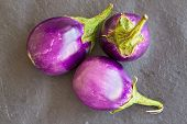 foto of aubergines  - Three Baby size aubergines eggplants on stone gray background top view - JPG