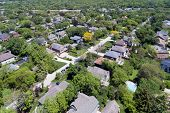 Aerial view of a neighborhood with mature trees in a Chicago suburban neighborhood in summer. Deefie poster
