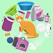 Cats Accessories Vector Illustration. Animal Supplies, Food And Toys For Cats, Toilet, Carrier And E poster