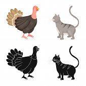 Vector Design Of Breeding And Kitchen Icon. Collection Of Breeding And Organic Vector Icon For Stock poster