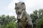 The Ancient Extinct Yrannosaurus Rex Dinosaur Is Outdoors In Nature. poster