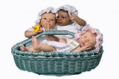 Three Baby In Basket