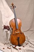 A Cello In Beige Background