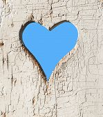 picture of outhouse  - Heart shape look out on wooden door to outhouse - JPG
