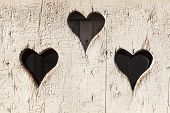 foto of outhouses  - Heart shape look out on wooden door to outhouse - JPG