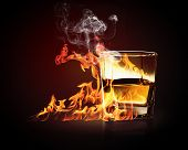 foto of absinthe  - Image of glass of burning yellow absinthe - JPG