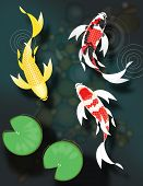 image of butterfly fish  - Stylized butterfly koi fish swimming in pond with lily pads - JPG