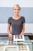 picture of jewel-case  - Shop assistant at the window case with rings at jeweler - JPG