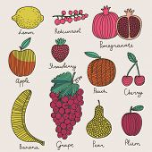 Bright fruit and berries set in vector. Lemon, redcurrant, apple, strawberry, banana, grape, pomegra