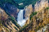 image of grand canyon  - Landscape view at Grand canyon of Yellowstone Wyoming USA - JPG