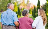 image of geriatric  - Elderly couple walking in the nature with the carer - JPG