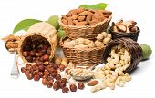 stock photo of brazil nut  - Variety nuts  - JPG