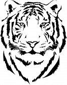 foto of wildcat  - tiger head in black interpretation with gradient in vectorial format - JPG
