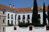 picture of duke  - the dukes palace of Vila Vicosa in Portugal