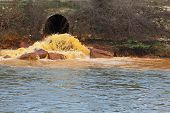 stock photo of sewage  - Pollution of Water - JPG
