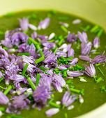 foto of edible  - Swiss chard and potato cream soup with chopped chives with edible chives flowers in green ceramic bowl - JPG