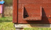 picture of bee-hive  - Hive landing place with bees in the background - JPG