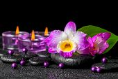 foto of calla lily  - spa background of purple orchid dendrobium green leaf Calla lily and candles on black zen stones with drops closeup