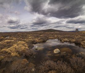 image of marshlands  - Marshland on the background of mountain scenery and the rain clouds - JPG