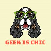 English Cocker Spaniel Geek. Dog In Smart Glasses. Geek Is Chic Text. Vector Illustration. Cartoon S poster