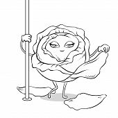 Cabbage Stripper Pole Dancer Undresses Coloring Vector Illustration. Cartoon Food Character. Color B poster