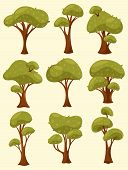 Set Of Isolated Tree Or Wood With Different Types Of Crown And Trunk. Summer Or Spring Shrub Or Bush poster