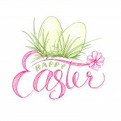 Easter Eggs With Grass And Camomile Flower.happy Paschal Or Resurrection Sunday Holiday Greeting Car poster