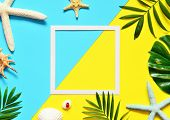 Tropical Background. Palm Trees Branches With Starfish And Seashell On Yellow And Blue Background. T poster
