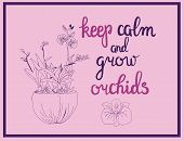 Hand Drawn Vector Illustration Of Orchid Flowers And Calligraphy Quote Keep Calm And Grow Orchids. poster