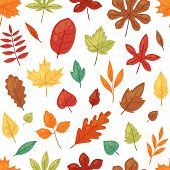 Autumn Leaf Vector Autumnal Leaves Falling From Fallen Trees Leafed Oak And Leafy Maple Or Leafing F poster