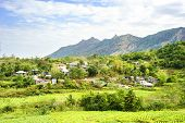 picture of luzon  - Philippines mountain village and tobacco field - JPG