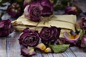 Withered Roses With Vintage Letters Close-up. Faded Flowers, Old Letters On A Wooden Table. Vintage  poster